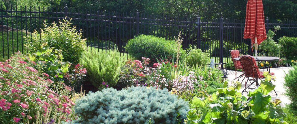 Best Perennial Garden Flowers