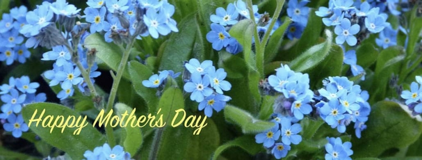 German Mother's Day and Authentic German Recipes