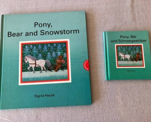 Pony, Bär und Schneegestöber